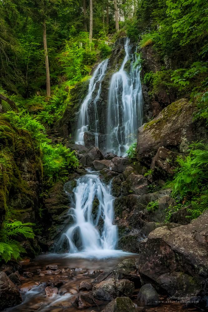Grande Cascade de Tendon – Vosges, France