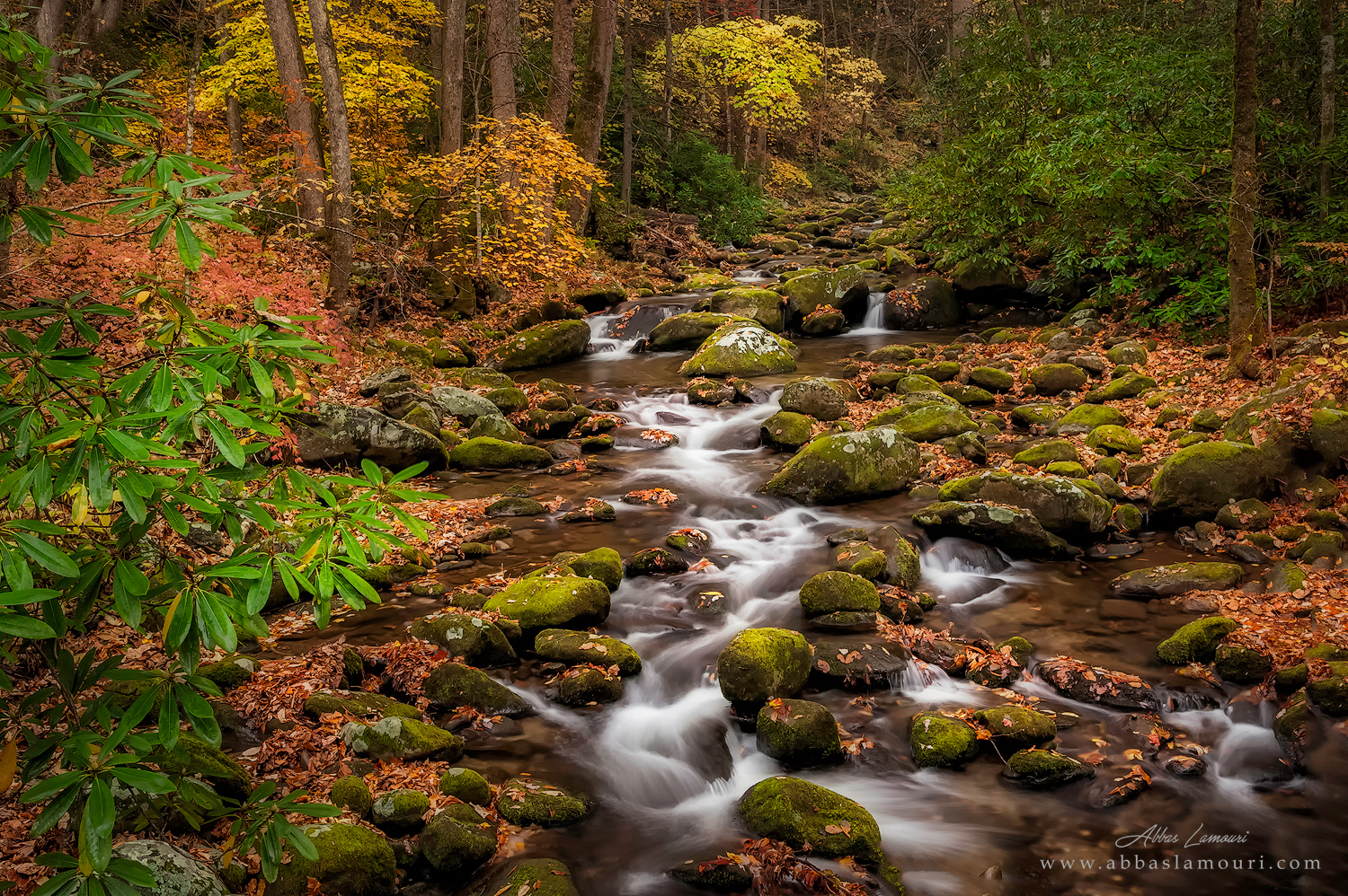 Roaring Fork - Smoky Mountains National Park, Tennessee